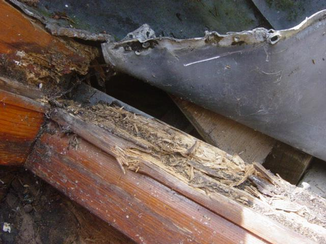Leaking velux windows problems illustrated with photos | EUULA